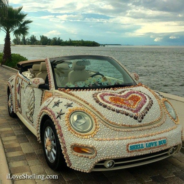 Shell Love Bug living the island dream