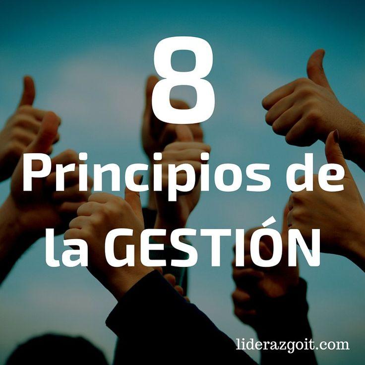 8 principios de la Gestión