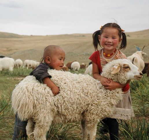 Mongolian children with one of the long haired sheep so essential to their lifestyle . The fleece is densely felted to make the protective , warm cover for the yurts in which they live .    famine kids .org