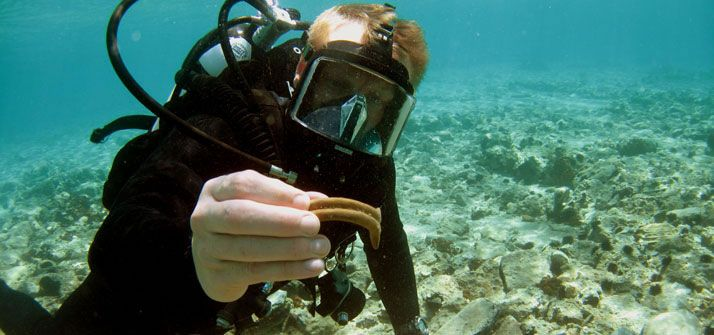 I was shown the Pavlopetri project by @thomsonpat, who thought I might be interested in what academics wear while doing underwater fieldwork. Snorkles FTW!
