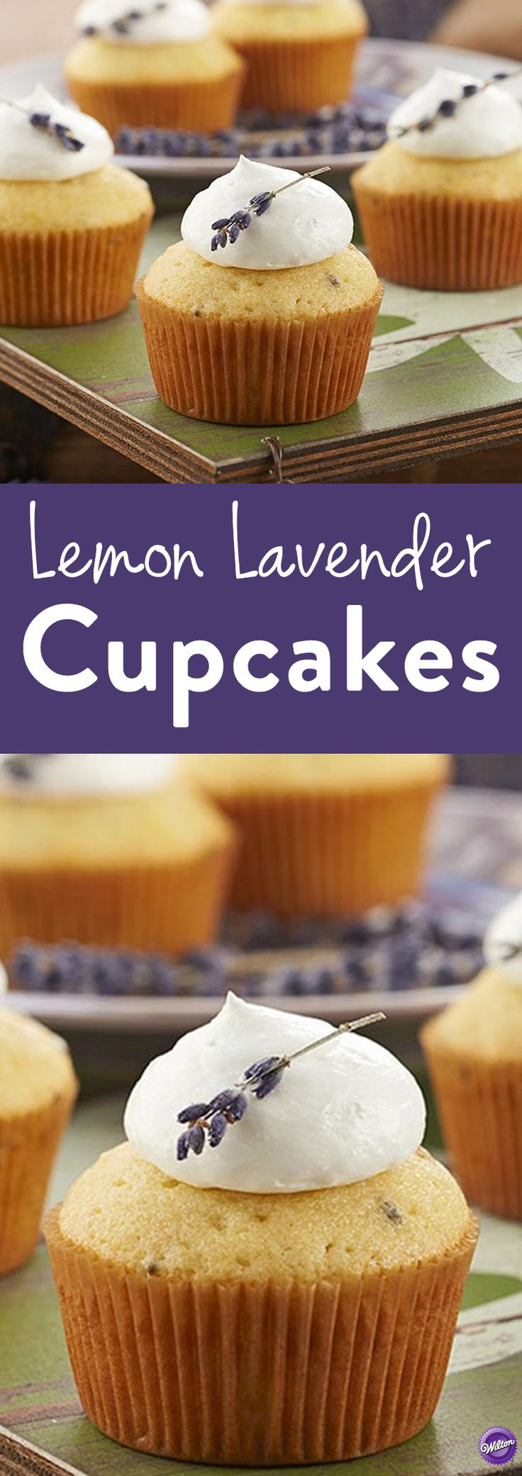 How to Make Lemon Lavender Cupcakes - The perfect balance of floral lavender and citrusy lemon blend together for a deliciously moist cupcake that's perfect for Sunday tea, a ladies lunch or an afternoon treat.