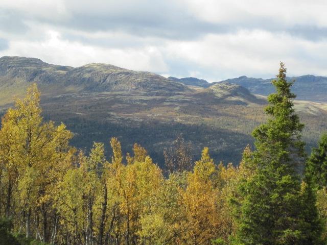 norwegian nature at its best
