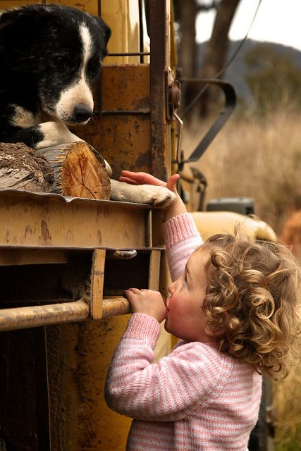 country living, AustraliaLittle Girls, Border Collies, Best Friends, Children, Wedding Photos, Baby Dogs, Kids, Country, Animal