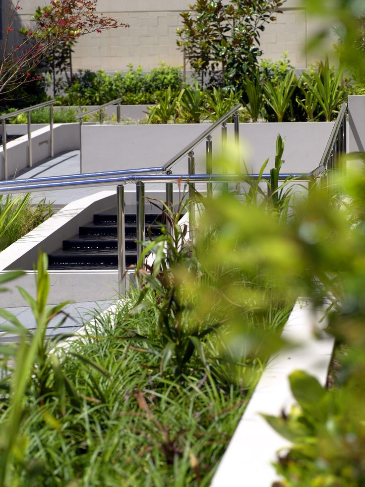 Tranquil gardens of Maroubra Central