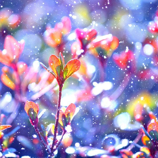 Image result for bright colors