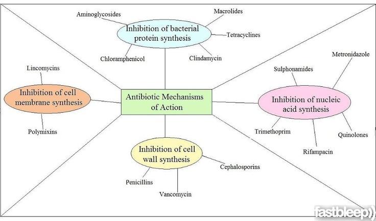 pharm antibiotics
