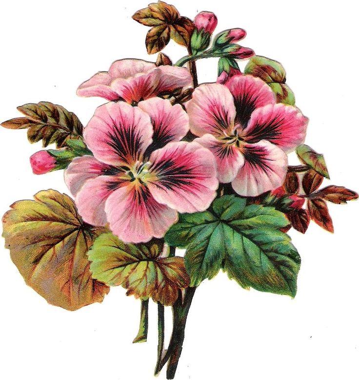 Oblaten Glanzbild scrap die cut  chromo Blume Blüte 12 cm blossom