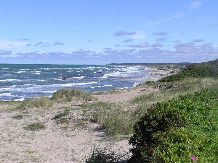 Udsigt mod øst fra Liseleje strand til Tisvildeleje