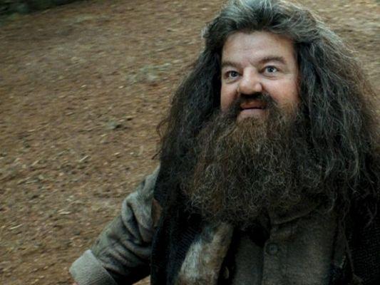 #7 Hagrid compte 6 styles de barbe !
