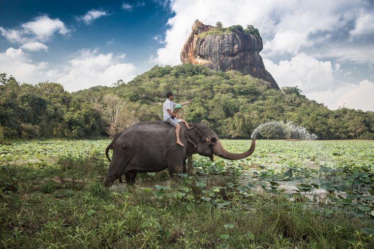 未知なる世界遺産の宝庫へ/スリランカ