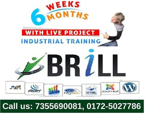 Brill Infosystems provides six month live project based #industrialtraining in Chandigarh for IT graduates. Register to get training in web development and internet marketing!