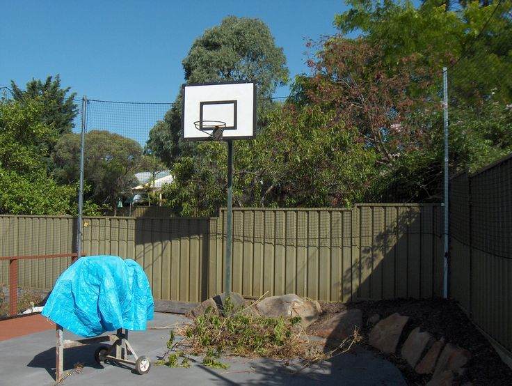 Net On Fence To Stop Basketball Going Over Backyard