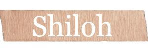 Shiloh - Rustic Girls Name. See all of the best rustic style baby names