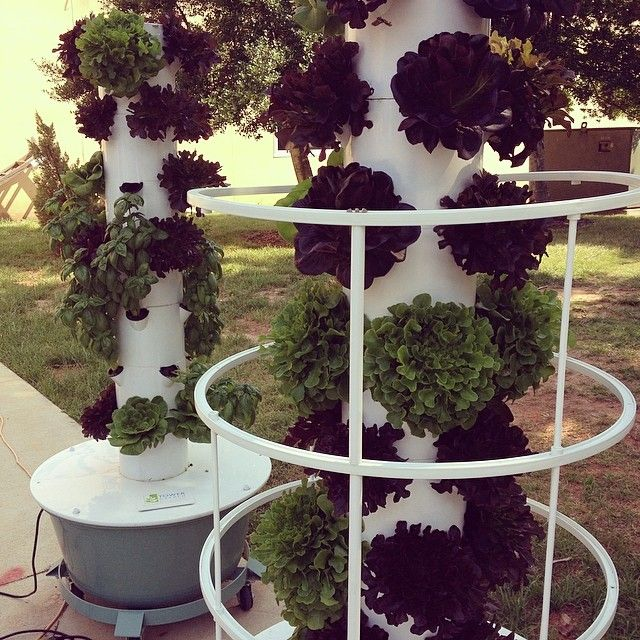97 Best Images About Aeroponic Garden On Pinterest Gardens Container Gardening And How To