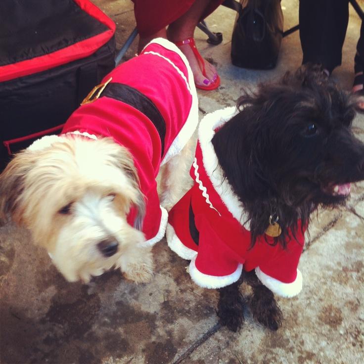 Mr & Mrs Claus!