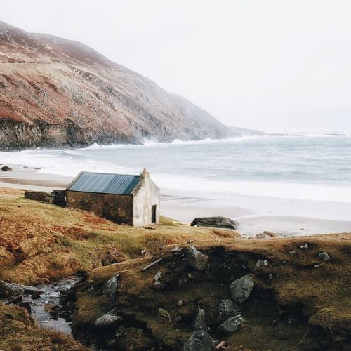 thesoutherly:  Finn Beales