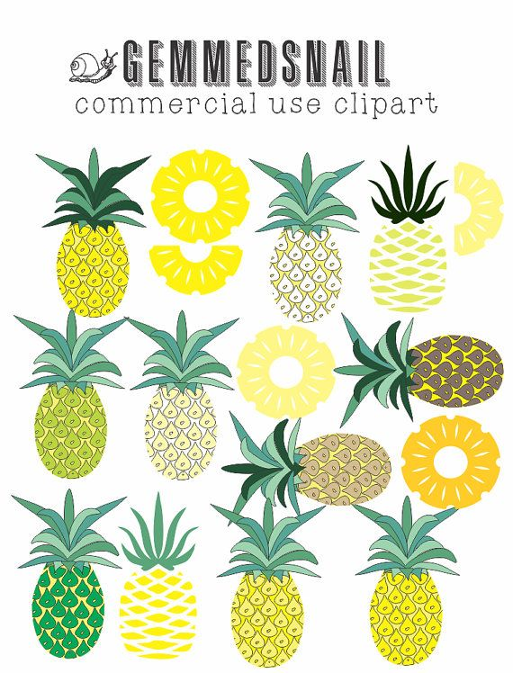 Pineapple clip art, different shades of pineapple and pineapple slices, pineapple clipart images x 16