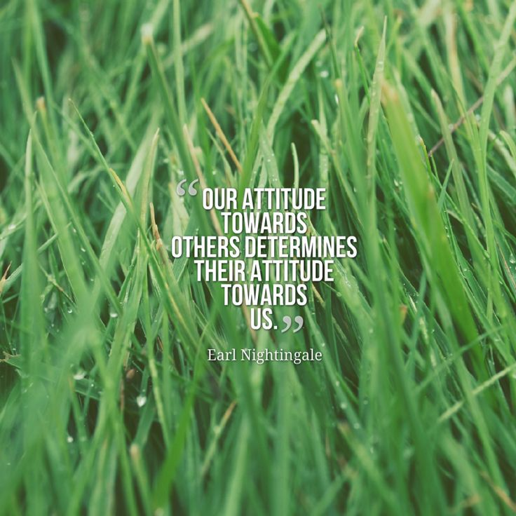 Today Quote: Our attitude towards others determines their attitude towards us.