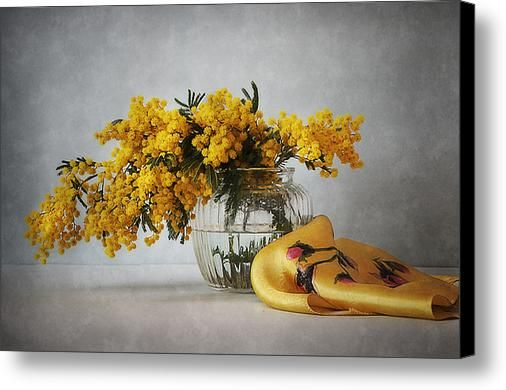$75 • Canvas Print: http://nikolay-panov.artistwebsites.com/products/mimosa-and-yellow-silk-scarf-nikolay-panov-canvas-print.html • Floral still life with bouquet of fresh branches of mimosa in glass vase and yellow silk scarf on gray background