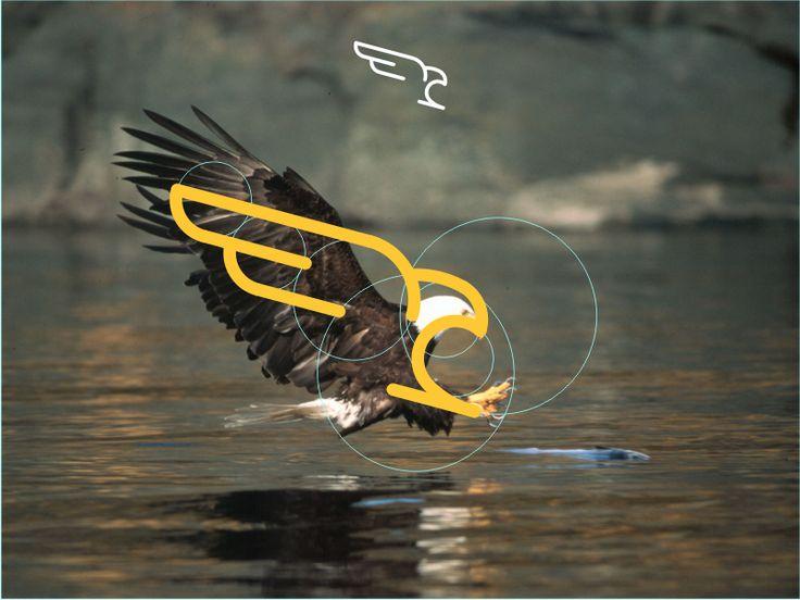 J'ai essayer de garder l'image aussi simple que je le pouvais. La chasse de l'aigle sont mon flux de travail. La photo d'aigle juste pour la référence d'angle.