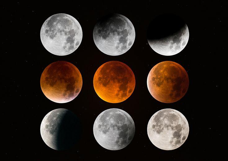 Vous avez été très nombreux à me faire parvenir des images de la Lune éclipsée(cliquez sur ce lien pour avoir l'adresse électronique et les conditions techniques). Il me serait difficile de les afficher toutes dans ce billet, j'ai donc fai