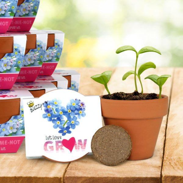 Wedding And Event Favors Terra Cotta Minis Forget Me Not Love Grow Kit Seed Kit Green Gifts