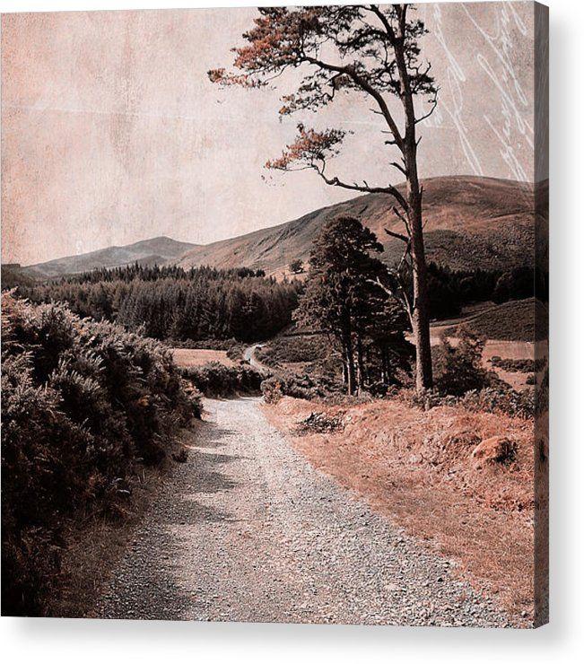 Jenny Rainbow Fine Art Photography Acrylic Print featuring the photograph Autumn Journey In Wicklow Hills. Ireland by Jenny Rainbow