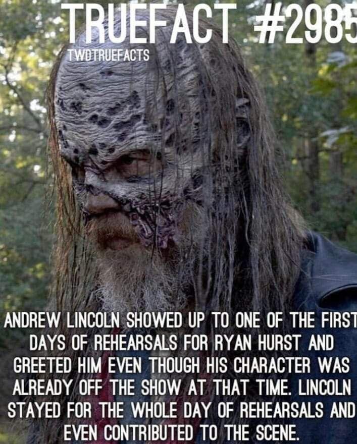Pin Auf The Walking Dead