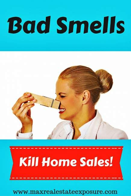 The Best Tips For Selling a Home Including Making Sure All Bad Odors Are Removed…