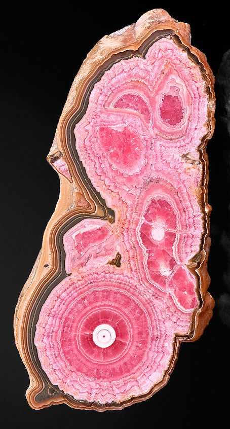 Beautiful cabinet specimen of Horn Rhodochrosite. From the Capillitas Mine, Andalgala, Catamarca, Argentina.