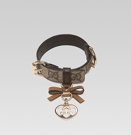 LoLa would look great with this collar...Gucci for the cutest poochie!