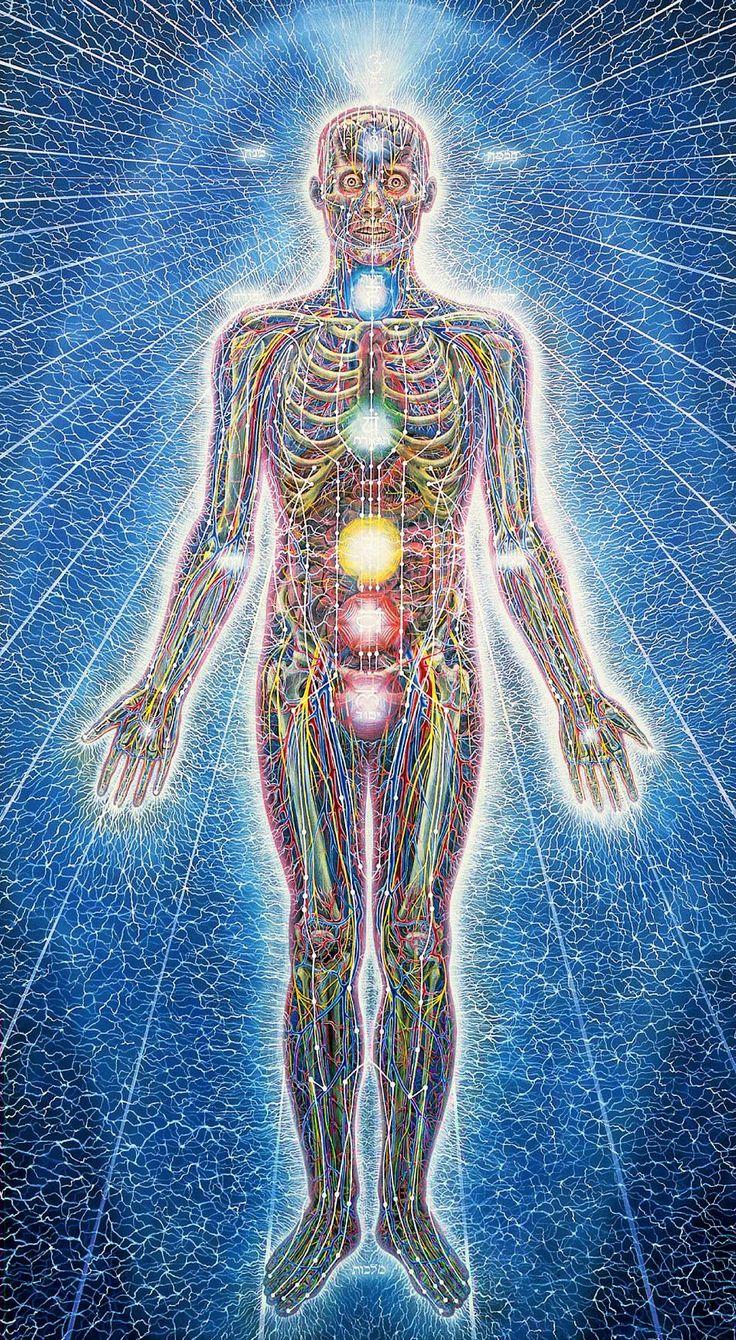 Energetické dráhy a energetická centra (čakry) v těle člověka. Znalosti těchto energetických linií využívá také akupunktura — ovlivněním energie v určitých bodech pomocí zapichování oněch známých jehliček ovlivňuje energeticky propojené orgány. Nakreslil Alex Grey.
