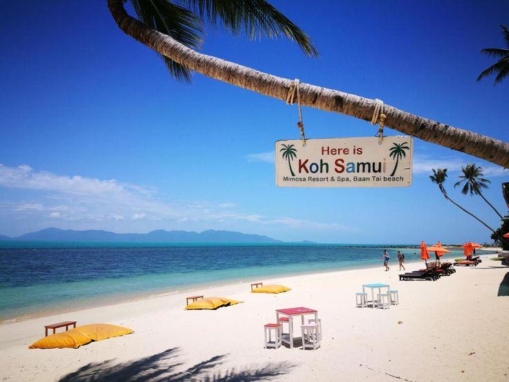 Mimosa Resort & Spa Samui Thailand - Hotelltilbud i siste øyeblikk på Internett