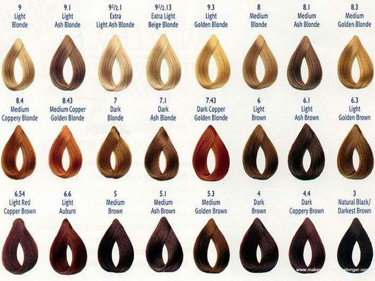 Hair Colours Chart Of Browns