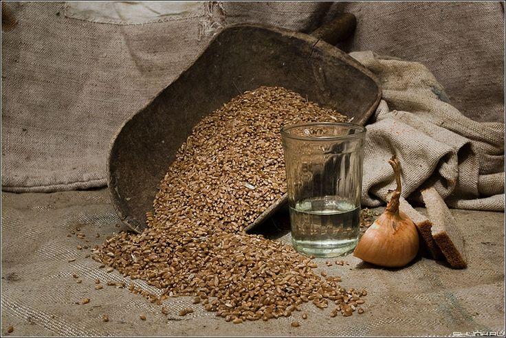 📢Рецепт сахарно-зернового самогона (СЗС)🌾  1️⃣Готовим «разброд» на диких дрожжах 2️⃣Заливается основной сироп 3️⃣Брожение 4️⃣Подготовка к перегонке (дистилляции) 5️⃣Перегонка  🌾А также информация о диких дрожжах и ферментации!👇  Читайте рецепт на нашем сайте 👉https://goo.gl/Do87fL👈 Товары для самогоноварения👉https://goo.gl/csyXDC👈