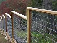 fence- deer and dog proof?