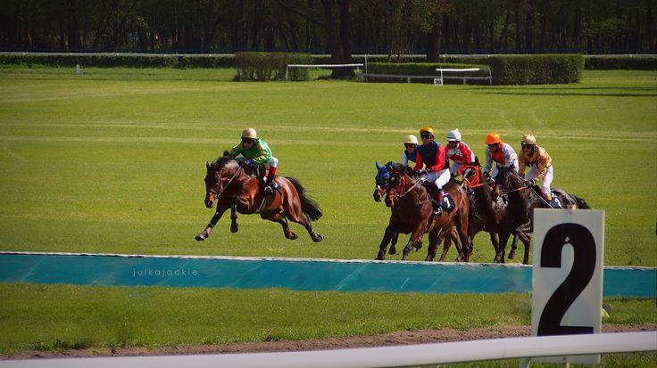 horse racing, opennig of the season, Partynice (Wrocław), Poland
