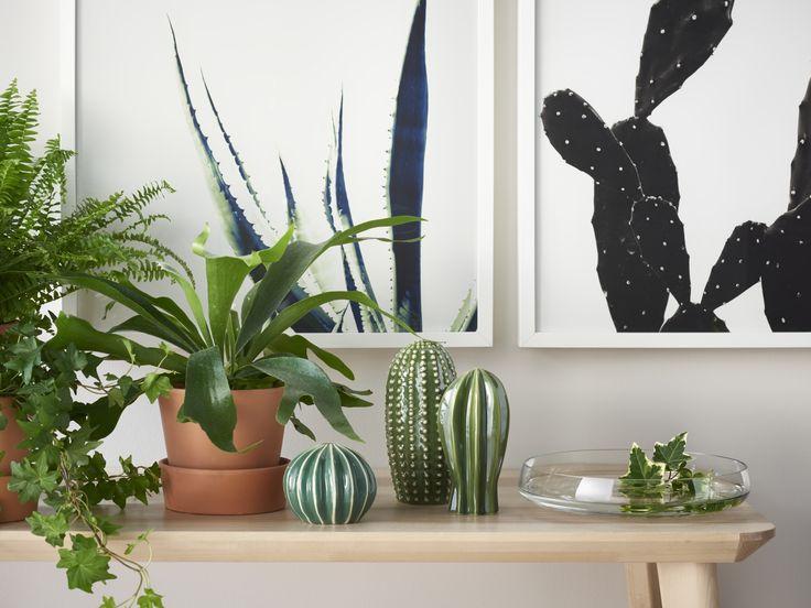 SJÄLSLIGT decoratie   IKEA IKEAnederland IKEAnl nieuw set cactus cactussen hip trendy urban groen plant planten woonkamer slaapkamer accessories decoratie funky trend