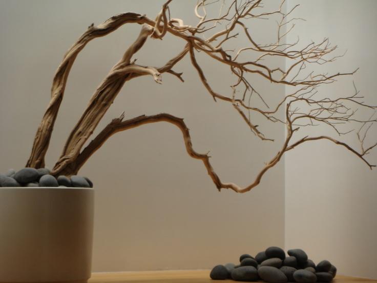 Bonsai rocks