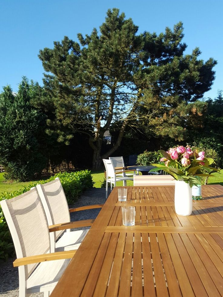 Summer evening in Belgium... #terrasse #outdoor #chill #relax #garden
