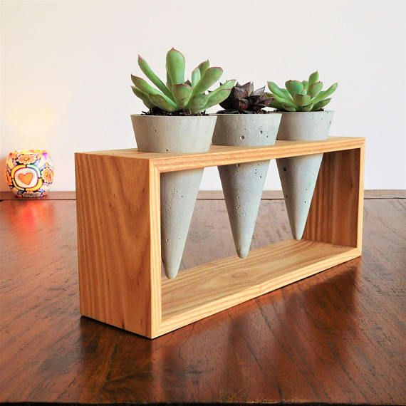 Set of 3 succulent concrete cone planters white oak house plant stand, indoor garden decor office plant pots summer wood decor gift for her