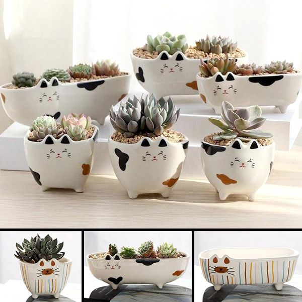 Cat Ceramic Planter Pot Terrarium Various Designs Ceramic Flower Pots Diy Flower Pots Flower Pots