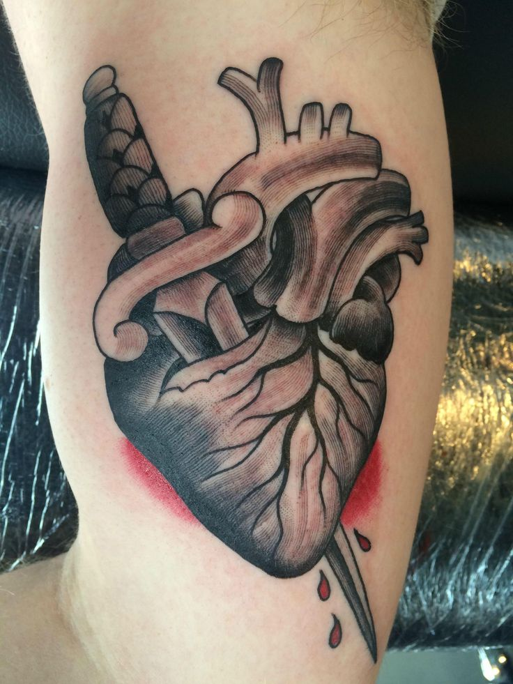 55 best images about ink on pinterest for Tattoo places in nashville