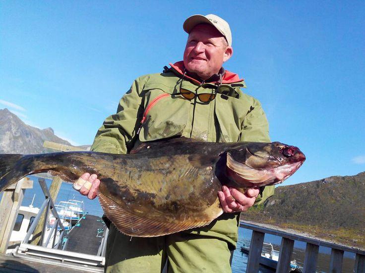 II Рыболовный любительский турнир в северной Норвегии 2015