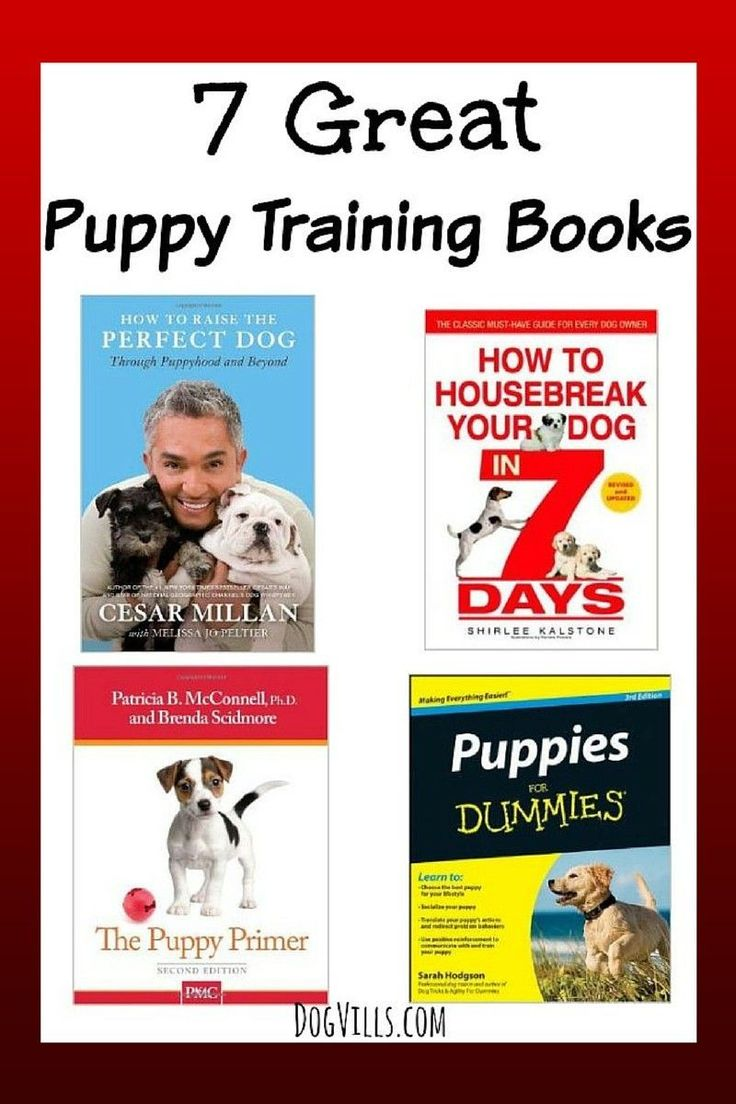 best dog training images on pinterest pets pup and puppy schedule