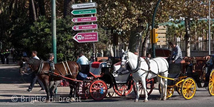 #Málaga #Sightseeing / All places of interest you'll find here: http://www.amazon.co.uk/M%C3%A1laga-Capital-Coast-Brigitte-Hilbrecht/dp/1517300533/ref=sr_1_1?s=books&ie=UTF8&qid=1456574193&sr=1-1&keywords=malaga