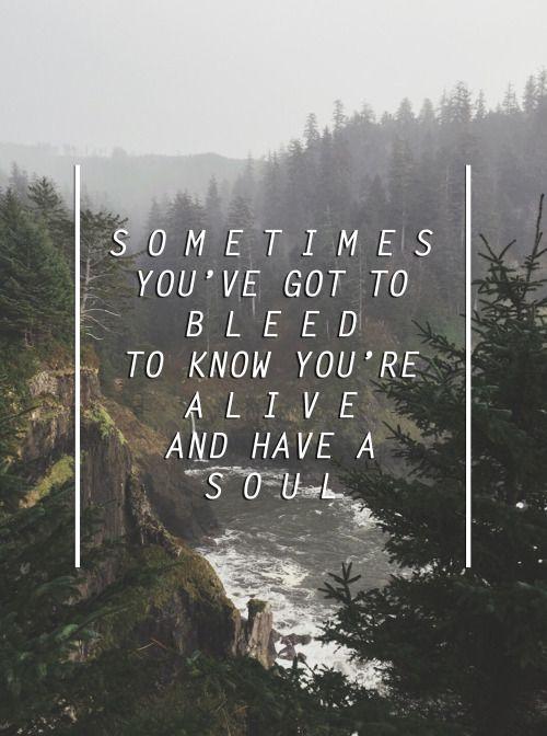 tear in my heart lyrics tumblr - Google Search