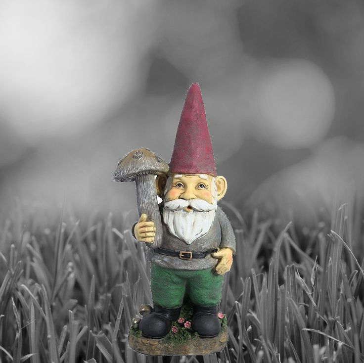 Garden Gnomes for Sale *Learn More at WeLoveGnomes.com