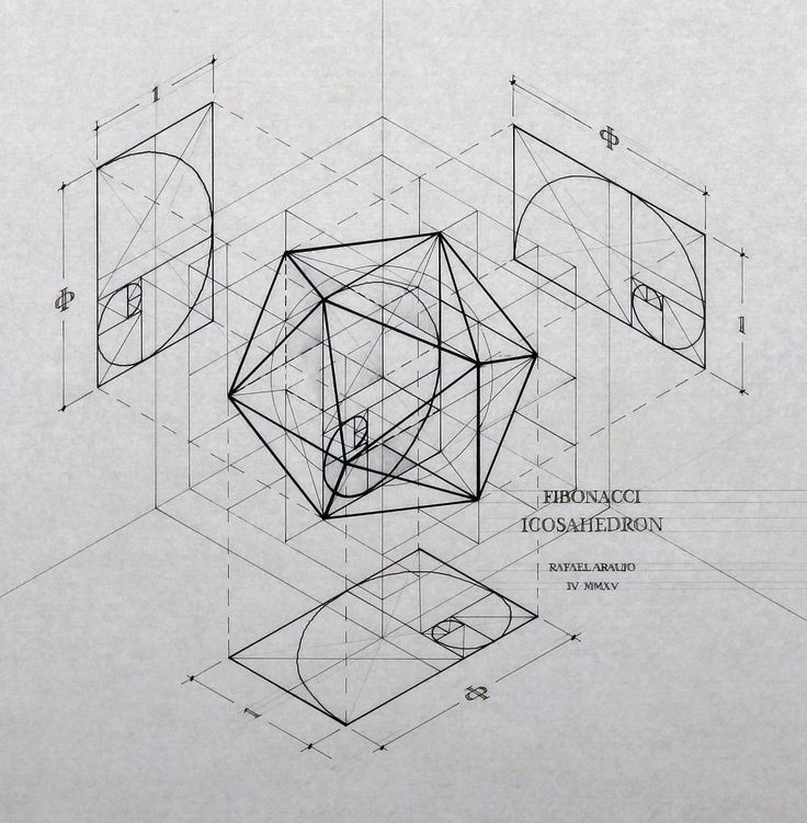 Fibonacci-Icosahedron by Rafael Araujo