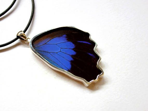 Check out this item in my Etsy shop https://www.etsy.com/uk/listing/545718040/butterfly-wing-necklace-butterfly-wing